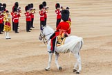 Trooping the Colour 2014. Horse Guards Parade, Westminster, London SW1A,  United Kingdom, on 14 June 2014 at 11:49, image #701