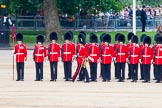 Trooping the Colour 2014. Horse Guards Parade, Westminster, London SW1A,  United Kingdom, on 14 June 2014 at 11:52, image #708