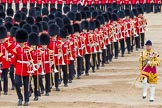 Trooping the Colour 2014. Horse Guards Parade, Westminster, London SW1A,  United Kingdom, on 14 June 2014 at 11:53, image #720