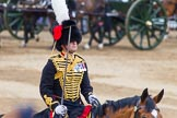 Trooping the Colour 2014. Horse Guards Parade, Westminster, London SW1A,  United Kingdom, on 14 June 2014 at 11:55, image #747