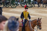 Trooping the Colour 2014. Horse Guards Parade, Westminster, London SW1A,  United Kingdom, on 14 June 2014 at 11:55, image #748