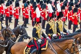 Trooping the Colour 2014. Horse Guards Parade, Westminster, London SW1A,  United Kingdom, on 14 June 2014 at 11:55, image #751