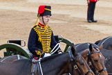 Trooping the Colour 2014. Horse Guards Parade, Westminster, London SW1A,  United Kingdom, on 14 June 2014 at 11:56, image #760