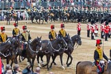Trooping the Colour 2014. Horse Guards Parade, Westminster, London SW1A,  United Kingdom, on 14 June 2014 at 11:56, image #761