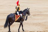 Trooping the Colour 2014. Horse Guards Parade, Westminster, London SW1A,  United Kingdom, on 14 June 2014 at 11:57, image #776