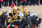 Trooping the Colour 2014. Horse Guards Parade, Westminster, London SW1A,  United Kingdom, on 14 June 2014 at 11:59, image #791