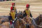 Trooping the Colour 2014. Horse Guards Parade, Westminster, London SW1A,  United Kingdom, on 14 June 2014 at 12:00, image #803