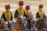 Trooping the Colour 2014. Horse Guards Parade, Westminster, London SW1A,  United Kingdom, on 14 June 2014 at 12:00, image #804