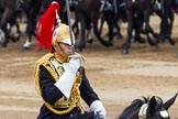 Trooping the Colour 2014. Horse Guards Parade, Westminster, London SW1A,  United Kingdom, on 14 June 2014 at 12:01, image #816