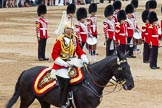 Trooping the Colour 2014. Horse Guards Parade, Westminster, London SW1A,  United Kingdom, on 14 June 2014 at 12:01, image #823