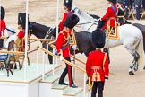 Trooping the Colour 2014. Horse Guards Parade, Westminster, London SW1A,  United Kingdom, on 14 June 2014 at 12:05, image #859
