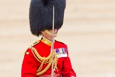 Trooping the Colour 2014. Horse Guards Parade, Westminster, London SW1A,  United Kingdom, on 14 June 2014 at 12:10, image #878
