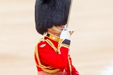 Trooping the Colour 2014. Horse Guards Parade, Westminster, London SW1A,  United Kingdom, on 14 June 2014 at 12:10, image #879