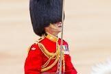 Trooping the Colour 2014. Horse Guards Parade, Westminster, London SW1A,  United Kingdom, on 14 June 2014 at 12:10, image #880