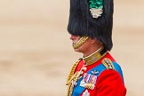 Trooping the Colour 2014. Horse Guards Parade, Westminster, London SW1A,  United Kingdom, on 14 June 2014 at 12:12, image #894