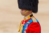 Trooping the Colour 2014. Horse Guards Parade, Westminster, London SW1A,  United Kingdom, on 14 June 2014 at 12:13, image #896