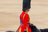 Trooping the Colour 2014. Horse Guards Parade, Westminster, London SW1A,  United Kingdom, on 14 June 2014 at 12:13, image #902