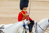 Trooping the Colour 2014. Horse Guards Parade, Westminster, London SW1A,  United Kingdom, on 14 June 2014 at 12:13, image #903