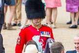 Trooping the Colour 2014. Horse Guards Parade, Westminster, London SW1A,  United Kingdom, on 14 June 2014 at 12:29, image #959