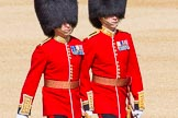 The Colonel's Review 2015. Horse Guards Parade, Westminster, London,  United Kingdom, on 06 June 2015 at 09:44, image #22