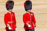 The Colonel's Review 2015. Horse Guards Parade, Westminster, London,  United Kingdom, on 06 June 2015 at 09:44, image #23