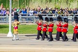 The Colonel's Review 2015. Horse Guards Parade, Westminster, London,  United Kingdom, on 06 June 2015 at 10:14, image #27