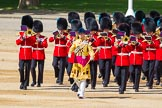 The Colonel's Review 2015. Horse Guards Parade, Westminster, London,  United Kingdom, on 06 June 2015 at 10:14, image #28