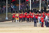 The Colonel's Review 2015. Horse Guards Parade, Westminster, London,  United Kingdom, on 06 June 2015 at 10:15, image #29