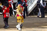 The Colonel's Review 2015. Horse Guards Parade, Westminster, London,  United Kingdom, on 06 June 2015 at 10:15, image #30