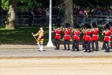 The Colonel's Review 2015. Horse Guards Parade, Westminster, London,  United Kingdom, on 06 June 2015 at 10:15, image #31