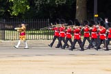 The Colonel's Review 2015. Horse Guards Parade, Westminster, London,  United Kingdom, on 06 June 2015 at 10:16, image #33