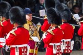The Colonel's Review 2015. Horse Guards Parade, Westminster, London,  United Kingdom, on 06 June 2015 at 10:18, image #40