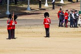 The Colonel's Review 2015. Horse Guards Parade, Westminster, London,  United Kingdom, on 06 June 2015 at 10:18, image #42