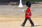 The Colonel's Review 2015. Horse Guards Parade, Westminster, London,  United Kingdom, on 06 June 2015 at 10:19, image #44