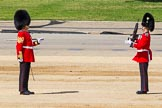 The Colonel's Review 2015. Horse Guards Parade, Westminster, London,  United Kingdom, on 06 June 2015 at 10:19, image #45