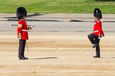 The Colonel's Review 2015. Horse Guards Parade, Westminster, London,  United Kingdom, on 06 June 2015 at 10:19, image #46