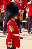 The Colonel's Review 2015. Horse Guards Parade, Westminster, London,  United Kingdom, on 06 June 2015 at 10:20, image #48