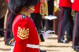 The Colonel's Review 2015. Horse Guards Parade, Westminster, London,  United Kingdom, on 06 June 2015 at 10:20, image #49
