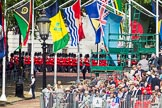 The Colonel's Review 2015. Horse Guards Parade, Westminster, London,  United Kingdom, on 06 June 2015 at 10:23, image #51