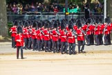 The Colonel's Review 2015. Horse Guards Parade, Westminster, London,  United Kingdom, on 06 June 2015 at 10:25, image #57