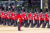 The Colonel's Review 2015. Horse Guards Parade, Westminster, London,  United Kingdom, on 06 June 2015 at 10:25, image #58