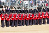 The Colonel's Review 2015. Horse Guards Parade, Westminster, London,  United Kingdom, on 06 June 2015 at 10:26, image #59