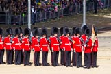 The Colonel's Review 2015. Horse Guards Parade, Westminster, London,  United Kingdom, on 06 June 2015 at 10:26, image #60