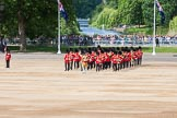 The Colonel's Review 2015. Horse Guards Parade, Westminster, London,  United Kingdom, on 06 June 2015 at 10:27, image #62