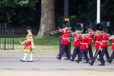 The Colonel's Review 2015. Horse Guards Parade, Westminster, London,  United Kingdom, on 06 June 2015 at 10:27, image #66