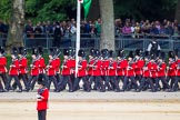 The Colonel's Review 2015. Horse Guards Parade, Westminster, London,  United Kingdom, on 06 June 2015 at 10:27, image #70