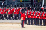 The Colonel's Review 2015. Horse Guards Parade, Westminster, London,  United Kingdom, on 06 June 2015 at 10:27, image #71
