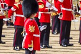 The Colonel's Review 2015. Horse Guards Parade, Westminster, London,  United Kingdom, on 06 June 2015 at 10:31, image #91