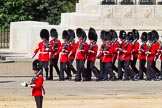 The Colonel's Review 2015. Horse Guards Parade, Westminster, London,  United Kingdom, on 06 June 2015 at 10:31, image #93