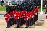The Colonel's Review 2015. Horse Guards Parade, Westminster, London,  United Kingdom, on 06 June 2015 at 10:32, image #95